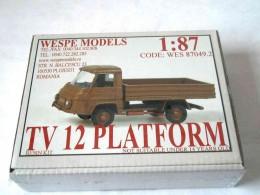 TV 12 PLATFORM
