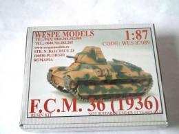 F.C.M 36